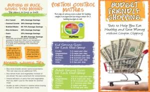 Budget Brochure Handout
